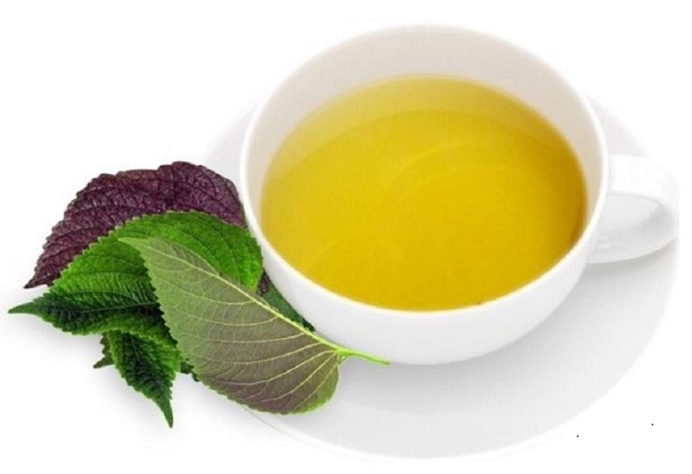 Uống nước lá tía tô thường xuyên giúp điều trị các bệnh liên quan tới đường hô hấp