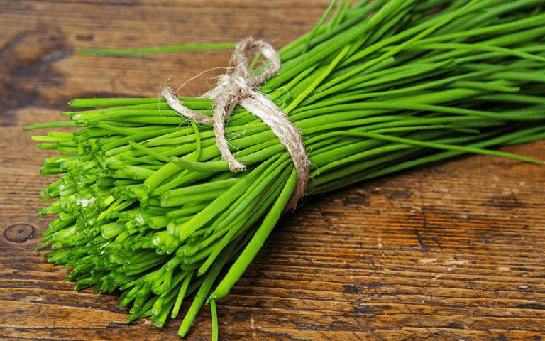 Lá hẹ chứa nhiều tinh dầu có lợi cho họng và tiêu viêm