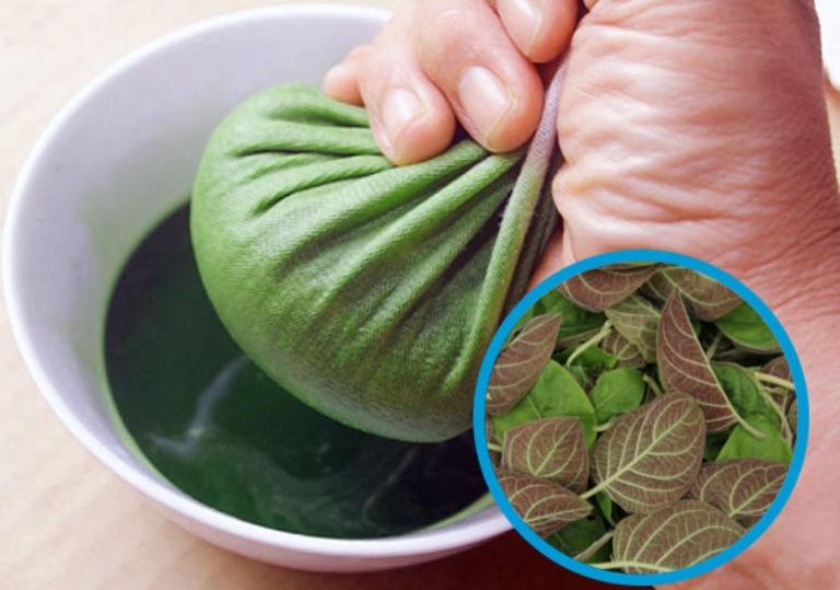 Vắt nước cốt lá mơ lông sử dụng để uống giúp cải thiện tình trạng bệnh