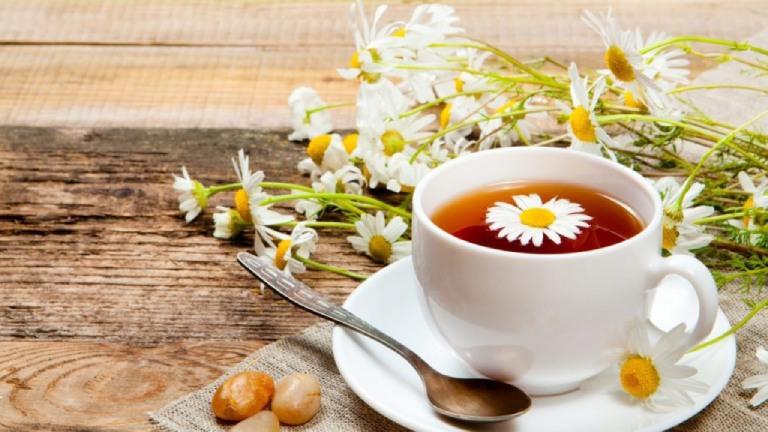 Hoa cúc chứa các thành phần giúp kháng khuẩn, tiêu viêm nên rất tốt cho người bị viêm amidan