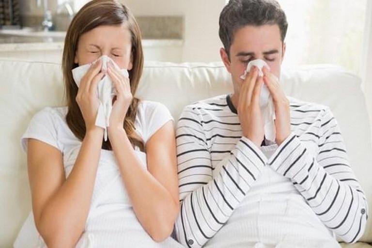 Viêm mũi dị ứng là gì? Nguyên nhân, dấu hiệu và điều trị