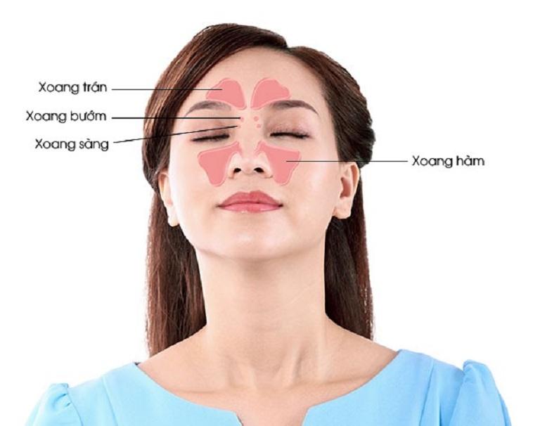 Bệnh được chia thành nhiều loại theo cấu trúc và vị trí xoang