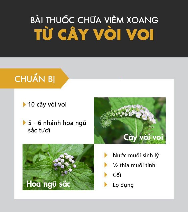 Bài thuốc chữa viêm xoang có thành phần chính là cây vòi voi và hoa ngũ sắc