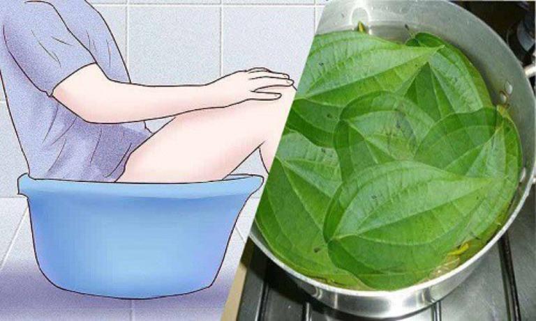 Ngâm hậu môn trong nước lá trầu không giúp giảm đau rát và ngứa ngáy