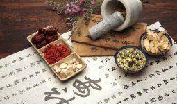 Các bài thuốc Đông y chữa viêm amidan mãn tính tập trung vào dưỡng âm, thanh phế, tiêu viêm, hoạt huyết