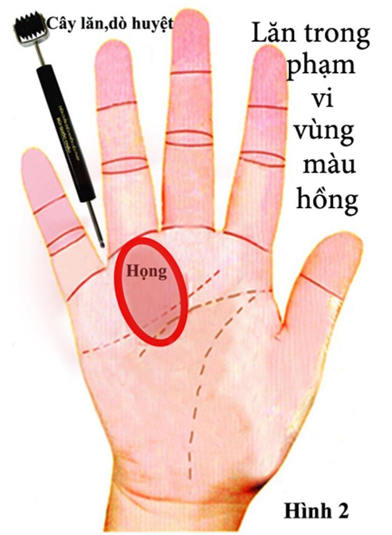 Dùng cây lăn có cầu gai nhỏ để lăn bên trong lòng bàn tay