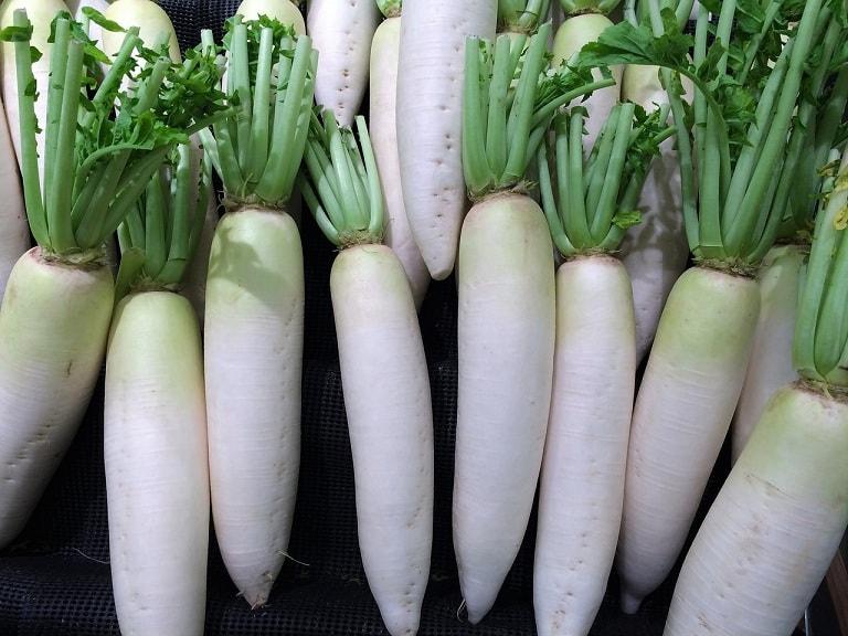 Củ cải trắng chữa viêm họng