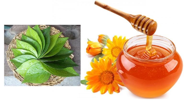 Lá trầu kết hợp với mật ong