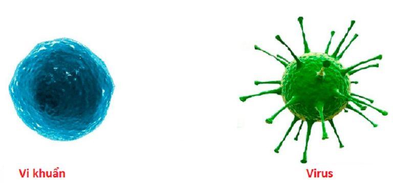 Vi khuẩn, virus là tác nhân chính gây tổn thương ở phế nang phổi