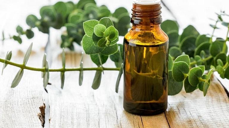 Đặc tính kháng khuẩn của dầu sẽ giúp cải thiện tình trạng nghẹt mũi, sổ mũi, viêm xoang