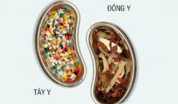 So với tây y thì tác dụng chữa bệnh của Đông y đến lâu hơn