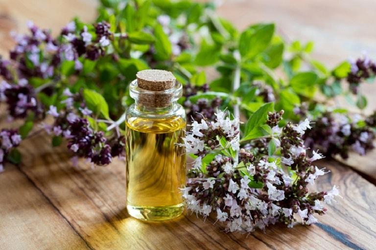 Không chỉ giúp trấn an tinh thần, cải thiện trí nhớ tinh dầu hương thảo còn giúp điều tị viêm xoang hiệu quả