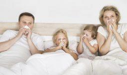 Viêm mũi dị ứng quanh năm là bệnh lý rất dễ tái phát