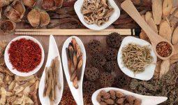 Điều trị viêm phế quản mãn tính bằng thuốc Đông y với nhiều ưu điểm nổi bật