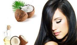 Giảm gàu, rụng tóc bằng dầu dừa
