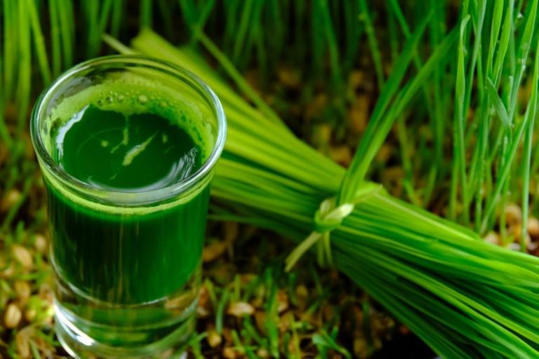 Nam giới nên duy trì thói quen uống nước ép lá hẹ mỗi ngày để hỗ trợ điều trị yếu sinh lý
