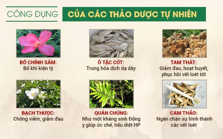 Một số loại thảo dược chính trong Sơ can Bình vị tán