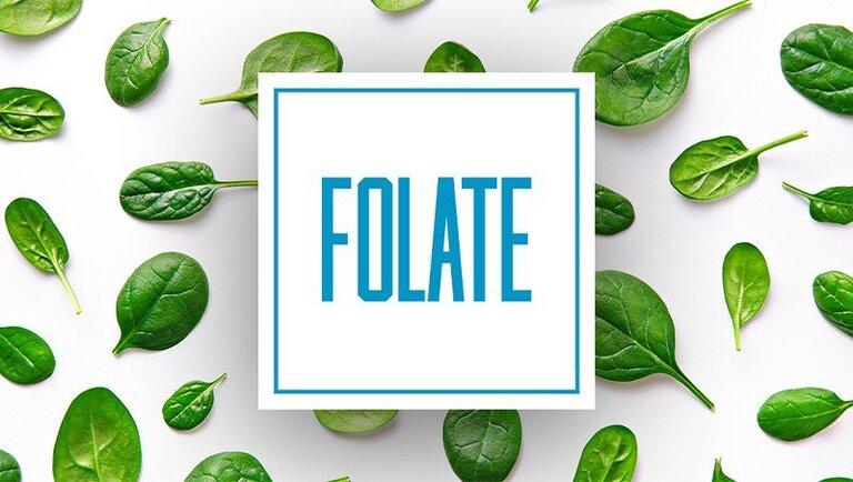 Nhóm thực phẩm Folate ngừa nguy cơ mắc ung thư cổ tử cung