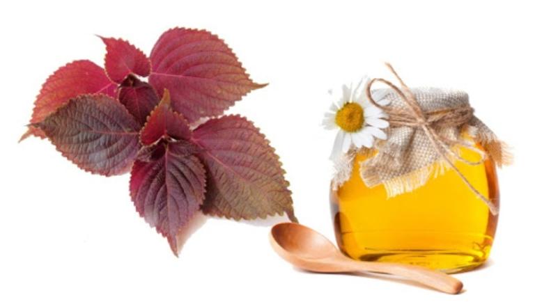Nâng cao hiệu quả trị mụn bằng cách dùng kết hợp mật ong với lá tía tô