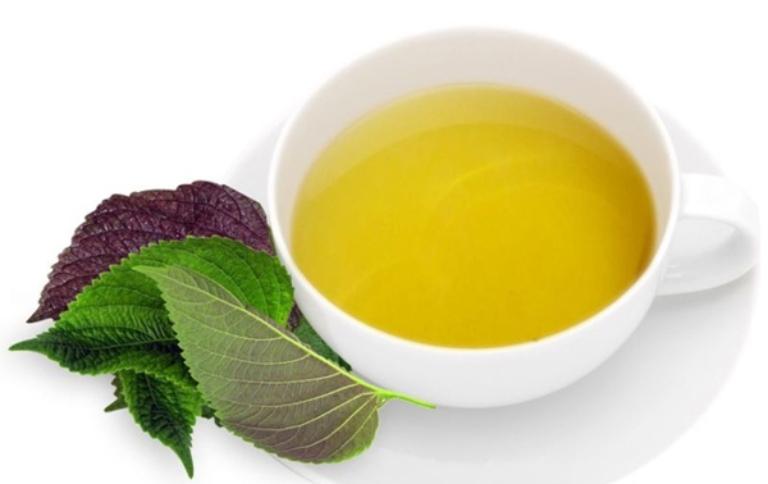 Uống trà lá tía tô giúp thanh nhiệt và đào thải độc tố tích tục bên trong cơ thể