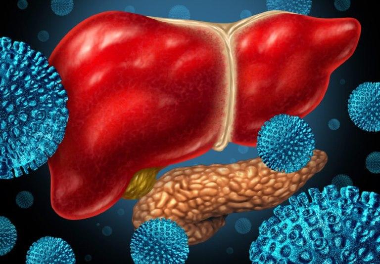 Virus viêm gan sau khi xâm nhập vào cơ thể sẽ bắt đầu thời gian ủ bệnh rồi mới phát sinh triệu chứng