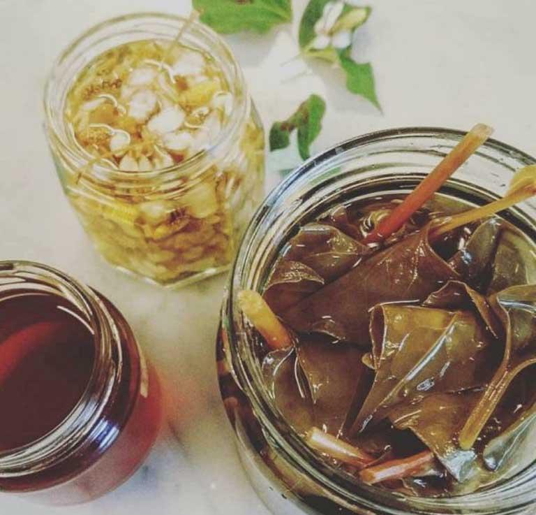 Uống nước sắc lá diếp cá khô đều đặn mỗi ngày giúp đẩy lùi triệu chứng do táo bón gây ra