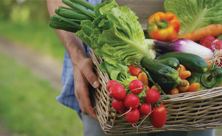 Tăng cường bổ sung vitamin và khoáng chất cho cơ thể từ các loại rau củ tươi xanh