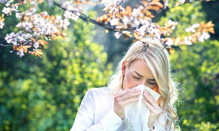thuốc tây điều trị viêm mũi dị ứng