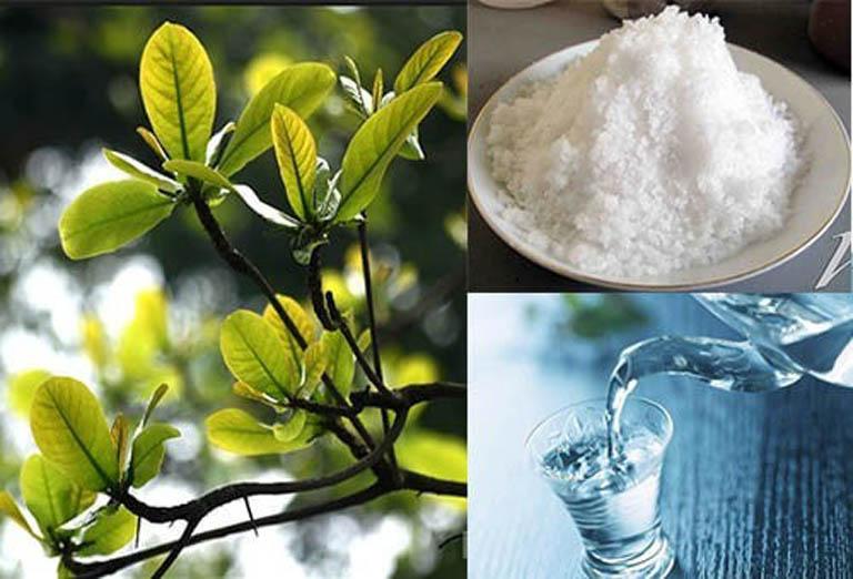 Dùng kết hợp lá bàng non với muối ăn để điều trị bệnh sâu răng tại nhà