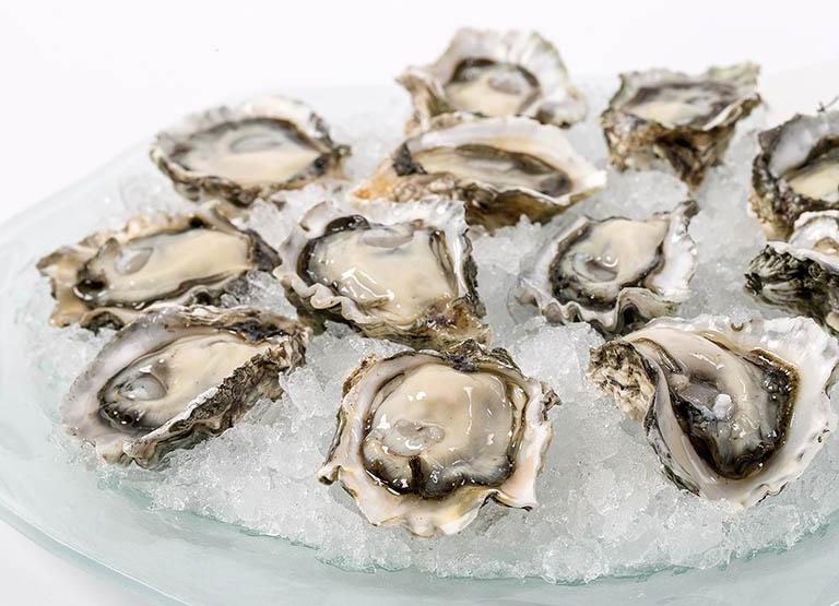 oyster gold có tốt không